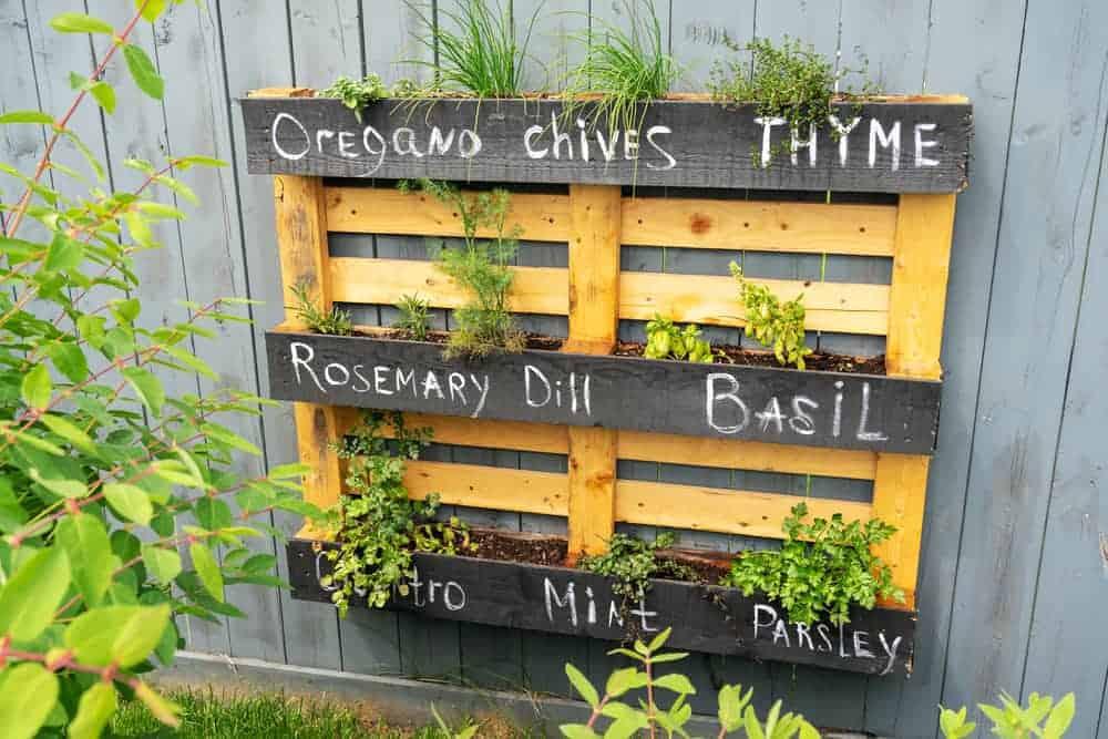Orenda Home Garden_How to Build a Vertical Plant Garden