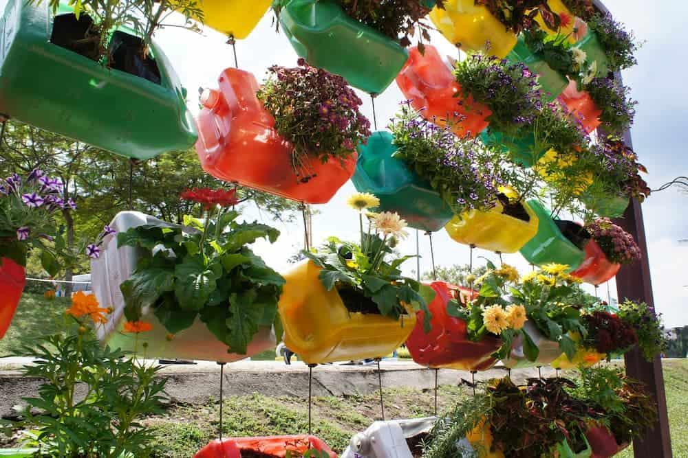 Orenda Home Garden_Steps in Creating a Plastic Bottle Garden