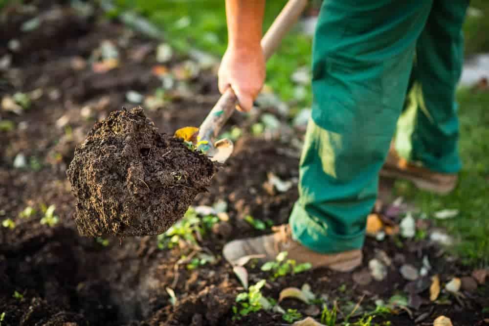 Orenda Home Garden_Gardening Steps to Prep Your Soil