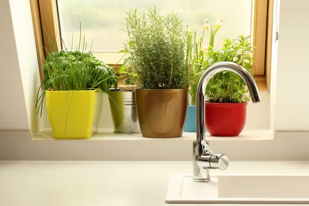 Orenda Home Garden_Indoor Garden of Fresh Herbs